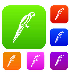 parrot set collection vector image vector image