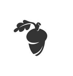 Acorn icon isolated on a white background vector image
