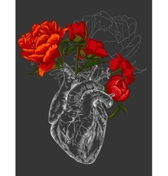Drawing human heart with flowers vector