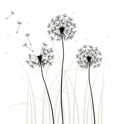 Meadow weeds dandelions silhouettes vector
