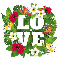 Tropic and exotic beautiful plants and flowers vector