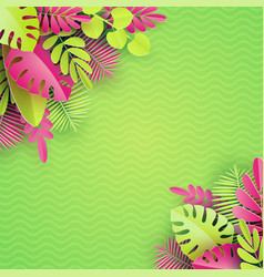 tropical paper palm monstera leaves frame summer vector image
