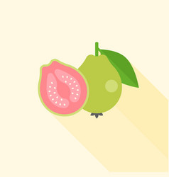 Whole and half guava in cross section vector