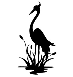beauty heron silhouette vector image vector image