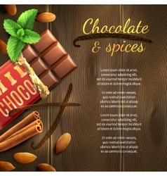 Chocolate And Spices Background vector image vector image