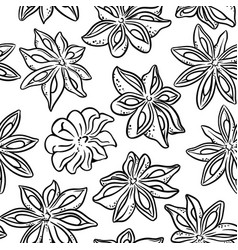 anise seamless pattern vector image