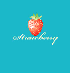 colorful tasty strawberries vector image