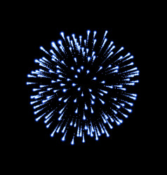 firework blue bursting isolated black background vector image