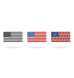 flag american in three styles flags isolated on vector image