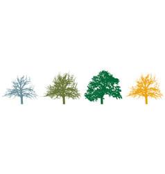 Four season tree silhouette tree with foliage vector