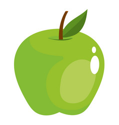 Green apple fruit isolated vector