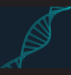 grey dna with polygon line on blue background vector image