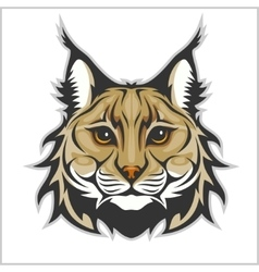 Head of lynx isolated on white - mascot logo vector image