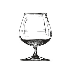 snifter vector image