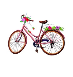 Bike and flowers vector image