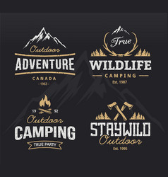 Outdoor Retro Emblems vector image