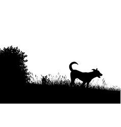 meadow dog silhouette vector image vector image