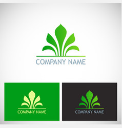 beauty green leaf logo vector image