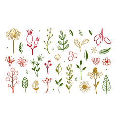 herbal tea and floral doodle set 4 vector image