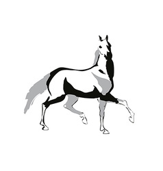 Horse drowing vector