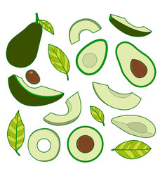 Set avocado vector