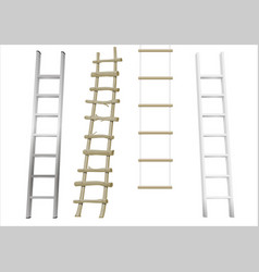 Set of different ladders vector
