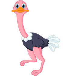 happy ostrich cartoon vector image