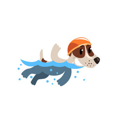 cute jack russell terrier athlete swimming in pool vector image