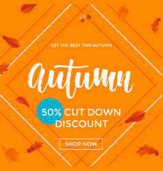 Autumn sale shopping discount poster fall maple vector