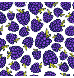 Blackberry seamless pattern doodle berry design vector