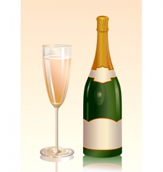 champagne vector image