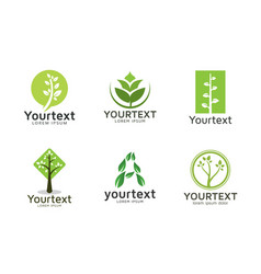 collection of green logos or icons design vector image