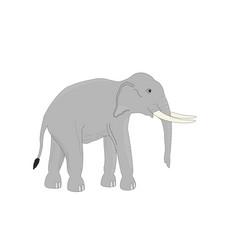 Isoated asia elephant cartoon vector