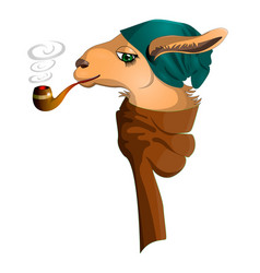 llama-hipster with smoking pipe in a stylish scarf vector image