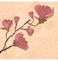 Magnolia flower card with place for your text vector