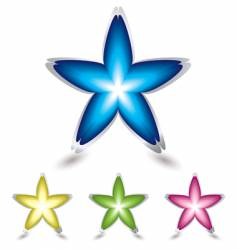 Star flower icon vector