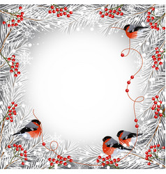 winter frame with bullfinches vector image