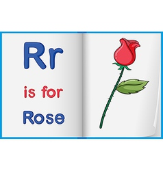 A picture of rose in book vector