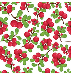Beautiful cranberries twing seamless vector