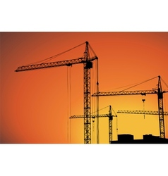 cranes on building for construction industry vector image