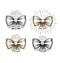 hand drawn bow holiday symbol bowknot sketch vector image