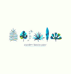 Stock set of tropical plant leaves vector