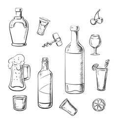 Alcohol drinks wine bottles and cocktails vector image