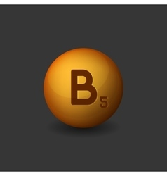 Vitamin B5 Orange Glossy Sphere Icon on Dark vector image