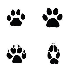 cat jaguar dog fox footprint vector image