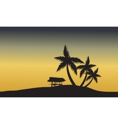palm trees sunset golden of silhouette vector image vector image