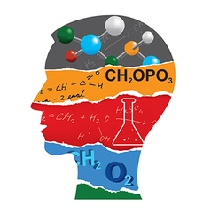 Chemistry student head silhouette vector