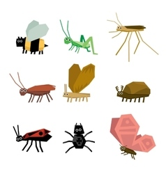 collection insects cartoon vector image