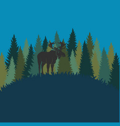 forest landscape with elk and forest of fir trees vector image
