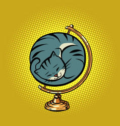 globe international cat is curled up in a ball vector image